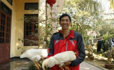 Anh Nguyễn Văn Đức, người khởi nghiệp với gà 9 cựa.
