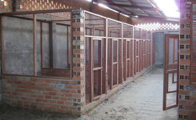 Những mô hình chuồng trại gà chọi đơn giản được làm từ kinh nghiệm sẵn có